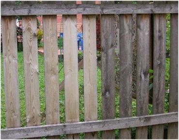 Восстановление цвета старой древесины фото