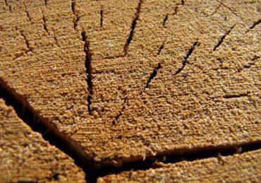 Трещины в брусе. Трещины в стене брусового дома. Как и чем их заделать?