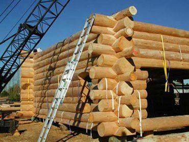 Технология правильной защиты древесины от гниения и вредителей