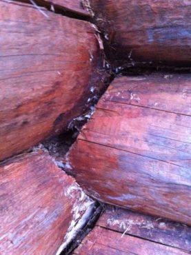 Средства защиты древесины от гниения