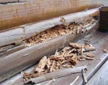 Как остановить гниение древесины? Деревянный дом