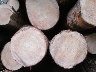 Лессирующие краски для дерева. Лессирующие антисептики для древесины